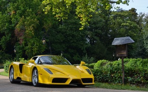 Picture supercar, ferrari, enzo, yellow