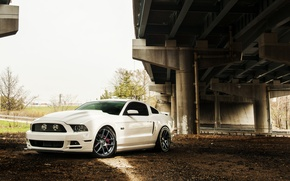 Picture Mustang, Ford, Ford, Muscle, Mustang, Car, 5.0