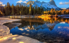 Wallpaper water, light, mountains, nature, ice, forest