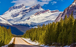 Picture road, the sky, clouds, snow, trees, mountains, canada, alberta, banff national park