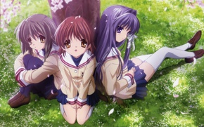 Picture Anime, clannad, girls, tree