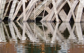 Picture reflection, background, widescreen, Wallpaper, bamboo, wallpaper, pond, widescreen, background, beautiful Wallpaper, the Wallpapers, full screen, …
