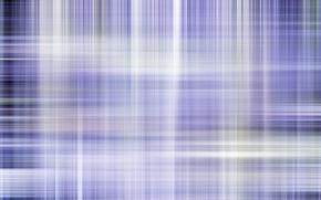 Picture purple, line, mesh