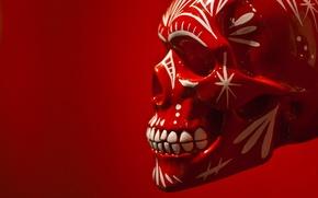 Picture background, skull, sake, paint