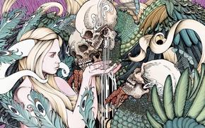 Picture demoness, 3000x1501, plants, digital art, colors, skulls, drawing, demons
