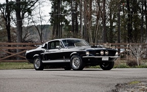 Wallpaper Shelby, 1967, Mustang, Ford, GT350, Shelby, Mustang, Ford