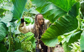 Picture leaves, jungle, johnny depp, Jack Sparrow, pirates of the Caribbean 4, johnny Depp