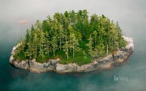 Picture trees, fog, rock, island, Canada, British Columbia, the Broughton archipelago