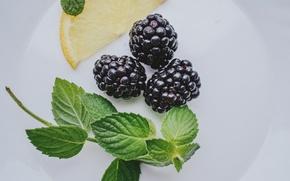 Picture lemon, mint, BlackBerry