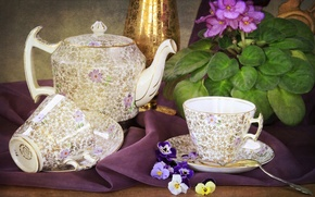 Picture flower, kettle, Cup, violet