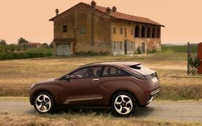 Picture Concept, the concept, X-Ray, brown, Lada, Lada, crossover, XRay