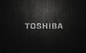 Picture silver, logo, toshiva