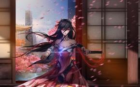Picture girl, the city, weapons, home, katana, anime, petals, Sakura, art, mikazuki industry