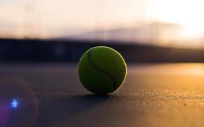 Picture macro, ball, tennis, the ball, light, sport, balls