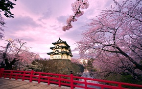 Picture the sky, clouds, trees, bridge, pond, castle, Japan, Sakura, flowering, Hirosaki