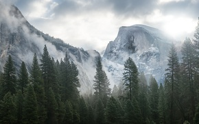 Picture forest, mountains, apple, mac, Yosemite