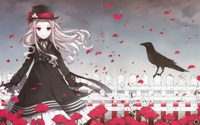 Picture girl, flowers, the fence, crow