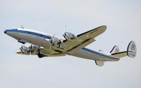 Picture airplane, aviation, Lockheed Constellation
