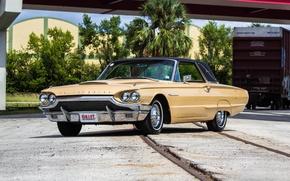 Wallpaper Ford, Ford, 1964, Thunderbird, Thunderbird