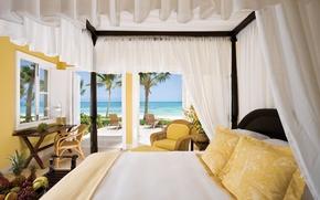 Picture sea, landscape, Palma, heat, room, the ocean, Wallpaper, interior, chair, grapes, bananas, wallpaper, fruit, pineapple, …