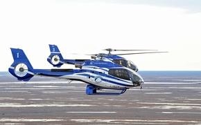 Picture the sky, helicopters, beautiful, pair