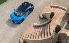Picture Bugatti, Avto, 2016, Chiron, 11.