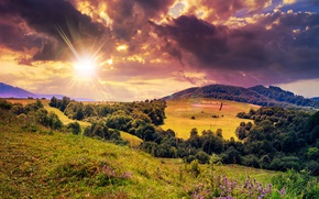 Picture summer, the sky, grass, the sun, clouds, rays, trees, flowers, field, forest, meadows