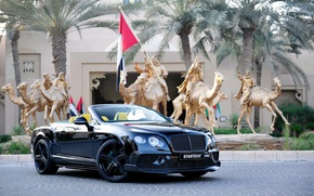 Wallpaper black, Bentley, Continental, convertible, Bentley, continental, Startech