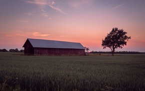 Picture field, the sky, the sun, clouds, trees, sunset, glade, the evening, Sweden, orange, farm