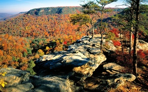 Picture autumn, forest, the sky, leaves, trees, mountains, rock