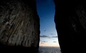Picture birds, power, the rift, rock.the ocean