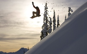 Picture winter, the sun, snow, snowboard, the descent, tree, extreme