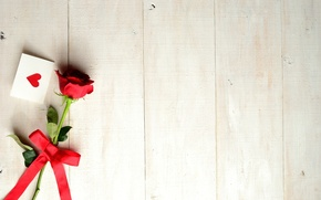 Picture flower, holiday, rose, tape, heart, bow, postcard, Valentine's Day