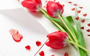 Wallpaper spring, hearts, tulips, red, March 8