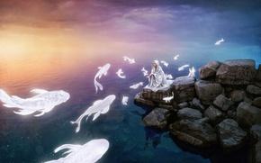 Picture sea, fish, dvushka