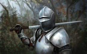 Picture forest, leaves, trees, metal, weapons, sword, armor, art, helmet, knight, blade