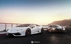 Picture Lamborghini, White, Ferrari, Italy, Ferrari, 458, Black, Black, Supercar, White, 2009, Lamborghini, Italia, Supercar, 2014, …