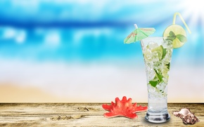 Wallpaper glass, shell, starfish, Mojito