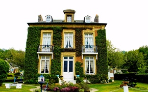Wallpaper house, greens, France, mansion