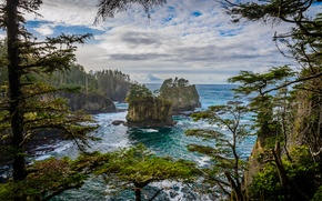 Picture sea, the sky, clouds, trees, rocks, island