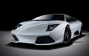 Picture car, Lamborghini, cars