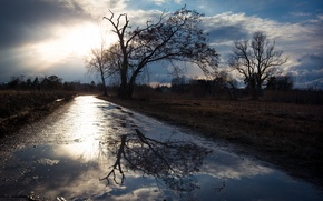 Picture road, morning, puddle