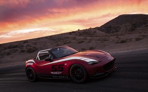 Picture Mazda, Cup, MX-5