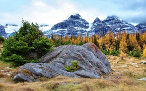 Picture autumn, the sky, grass, clouds, snow, trees, mountains, stone
