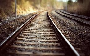 Picture nature, background, railroad