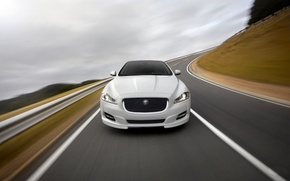 Picture Jaguar, Road, White, Machine, Logo, The hood, The front, Blur