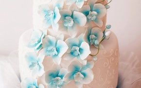 Picture flowers, cake, decoration, wedding, sweet, Orchid, wedding, Cakes, Sweets