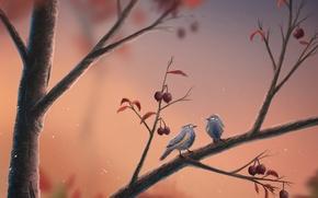 Picture berries, birds, branch, art