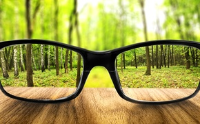 Picture greens, forest, trees, glasses, sharpness