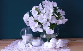 Wallpaper white, bouquet, milk, marshmallows, lavatera